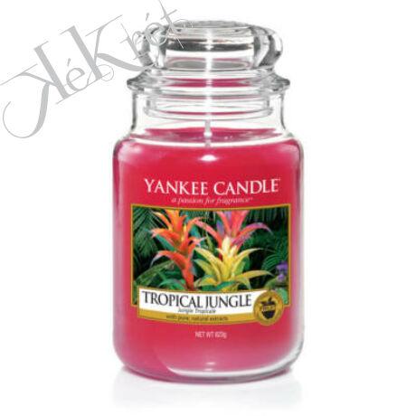 TROPICAL JUNGLE NAGY ÜVEGGYERTYA, Yankke Candle